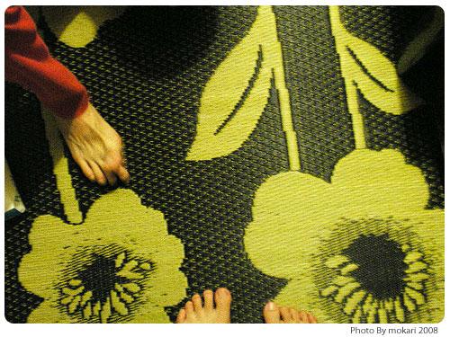 20080920 楽天市場「家具の里」さんで購入した国産い草ラグのフルールが届く。