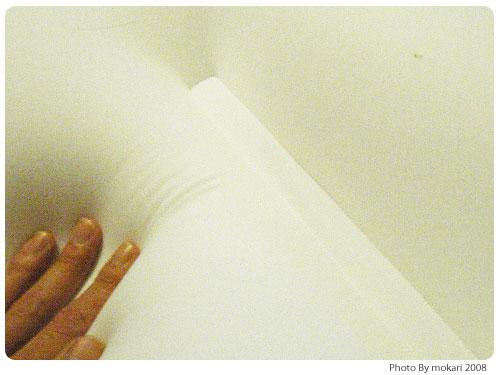 20081023-3 わたしの「マイ枕」自慢。王様の夢枕の感想。