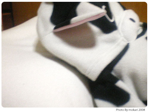 20081111-4 わたしのマイ枕「王様の夢枕」の感想(2)