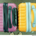 強度あり1万円以内で買えるニッセンのキャリーバッグを見て。