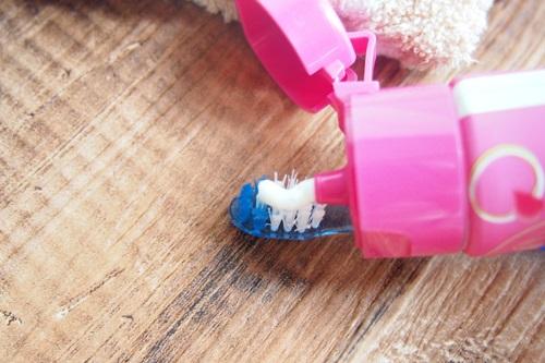 P6306438 バラの香りの歯みがき「ロージーミント」