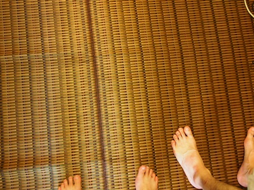 P7257474 楽天市場「家具の里」さんで購入した国産い草ラグのハーバスが届く