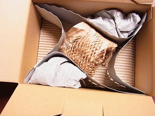 R1154717 マジョマジョのブラッドオンが届いたことをご報告します